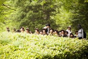 行事/ 春の遠足(ながもり・ながもり第二)